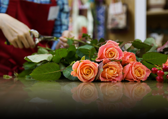Caring for Flowers Around the World